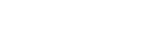 WSOL Logo - White